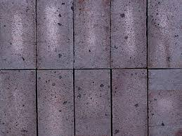Cleaning Concrete Patio Mold How To Clean Concrete Pavers And Patios For Mold Mold Free Living