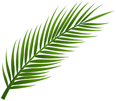 White Flag With Green Leaves Palm Tree Leaf Png Clip Art Best Web Clipart