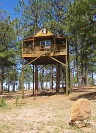 Amazing Tree Houses by A Very Cool Tree House In Truchas Nm High Road Artist