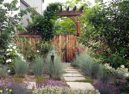 Backyard Design Denver