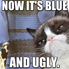 Ugly Cat Meme - funny angry grumpy cat memes collection for friends family
