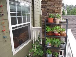 tiny apartment patio herb garden staradeal com