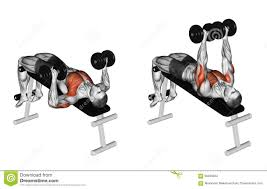 exercising decline dumbbell bench press stock illustration