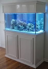 small aquarium design ideas home design u0026 architecture cilif com