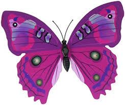 amazon com 24 pcs pvc 3d butterfly fridge magnets refrigerator
