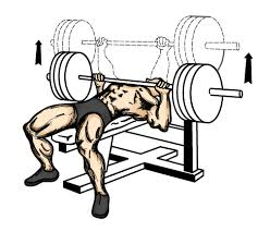 Proper Way To Do Bench Press How To Increase Your Bench Press