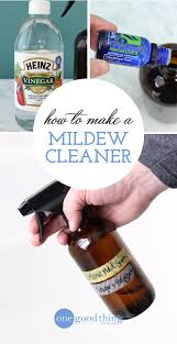 how to get rid of mold and mildew naturally one good thing by jillee