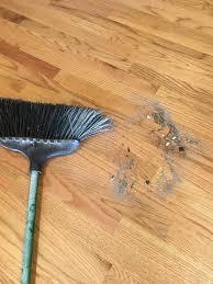 flooring hardwood flooring cost average to install installed per