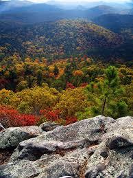 Arkansas forest images Best 25 ozark national forest ideas ozark national jpg