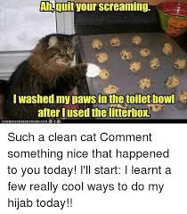 Clean Cat Memes - 25 best memes about funny clean cat funny clean cat memes