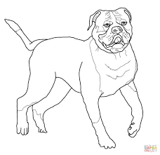 english bulldogs with puppy coloring page free printable