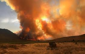 Wildfire Near Reno by Long Valley Fire Fully Contained After Burning 83 000 Plus Acres