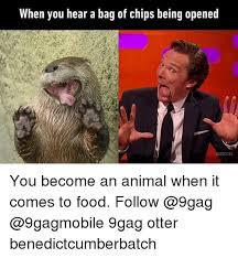 Benedict Cumberbatch Otter Meme - 25 best memes about otter otter memes