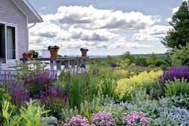 Flowers Gardens And Landscapes by Front Ridge Matthew Cunningham Landscape Design Llc