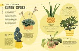 No Light Plants How Not To Kill Your Houseplant Survival Tips For The