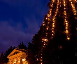 tree lighting western today
