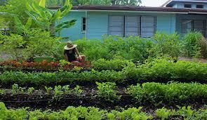 home fleet farming