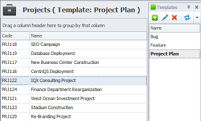 project management outline template and software solution for