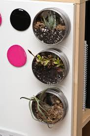 ikea planters ikea grundtal terrarium hack for the home pinterest