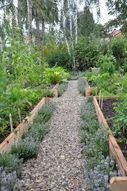 vegetable gardening 101 in great gardening ideas garden