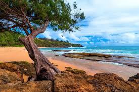 kauai canvas promotion shop for promotional kauai canvas on home decoration landscape nature kauai hawaii island beach sea clouds trees sand rock peninsulas silk fabric poster print 263fj