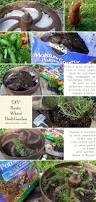 Herb Container Garden - diy rustic wheel herb garden how to miraclegroproject a hen u0027s