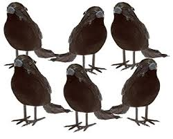 amazon com black feathered small crows 6 pc black birds