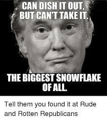 Biggest Internet Memes - can dish it out but can t take it the biggest snowflake ofall tell