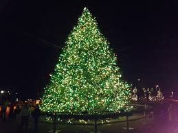 Large Ceramic Christmas Tree Two It Yourself Large Diy Outdoor Christmas Trees From Tomato