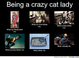 Funny Cat Lady Memes - crazy cat lady meme generator image memes at relatably com