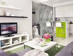 Home Decor Channel Apartment Living Room Design Decoration Channel Cool Amazing Of
