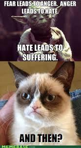 Fear Meme - fear leads to anger cat meme cat planet cat planet