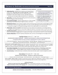 Sample Of A Sales Resume by Winning Sales Resume Examples Resume Sample For A Sales Executive