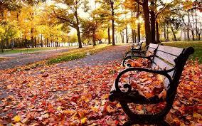cute fall desktop backgrounds autumn desktop wallpaper page 2 of 3 hdwallpaper20 com