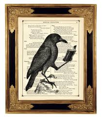 raven halloween party halloween raven crow reading book animal natural history