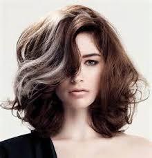 grey streaks in hair gray streaks in hair yahoo image search results silver