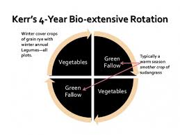 cover crops rotations kerr center