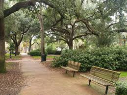 downtown savannah homes for sale don callahan real estate group