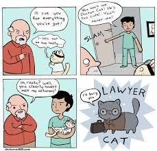 Lawyer Cat Meme - doctor cat meets his match doctor cat