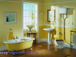 paint for bathrooms ideas 100 images bathroom paint home