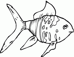 impressive goldfish coloring page 26 606