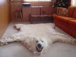 faux bear rug with head fake bear skin rug ebay rug design