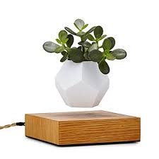 Planters U0026 Vases Shopping Online For Home Decor Decor Online by Home Decor Uncommongoods