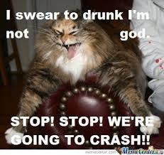 Drunk Cat Meme - drunk kitty is drunk by seitara meme center