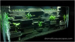 Diy Aquascape Dramatic Aquascapes Diy Aquarium Background Aaron Jenison In