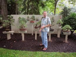 akron canton bonsai society building a bonsai garden an ongoing