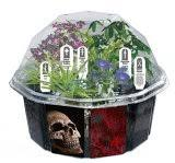 terrarium accessories and kits