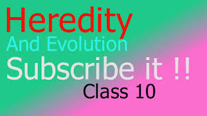 heredity and evolution class 10 in hindi part 2 of 2 for cbse up