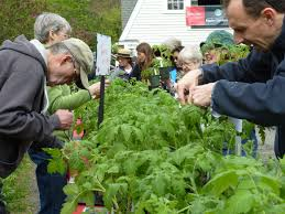 native plant sale plant sale rutgers master gardeners of essex