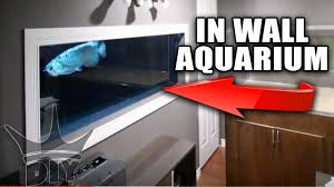 Shelves Built Into Wall Aquarium Built Into The Wall Update Youtube